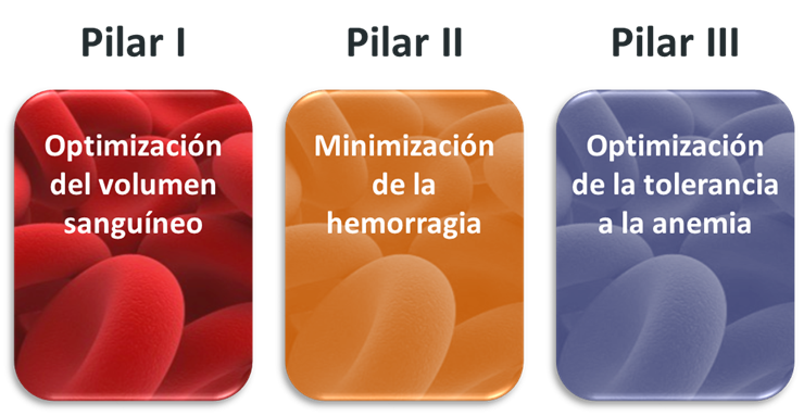 Pilares PBM